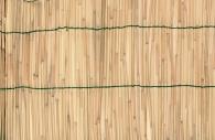 Zástěna bambus 1,5x5m VERDEMAX 6704