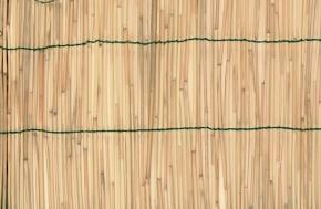 Zástěna bambus 2x5m VERDEMAX 6703